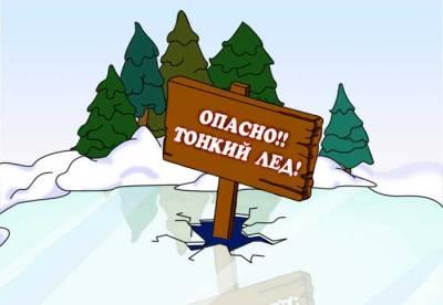 http://sad36artem.ucoz.ru/_nw/0/s92835195.jpg